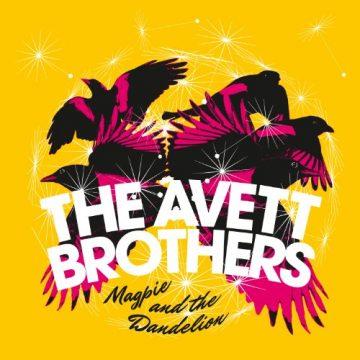 Avett Brothers Magpie & Dandelion